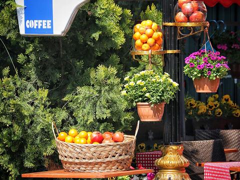 君士坦丁堡赛马场旅游景点图片