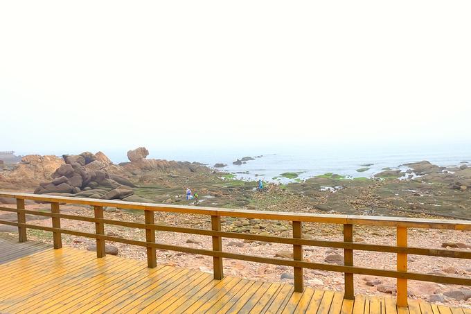 滨海木栈道图片