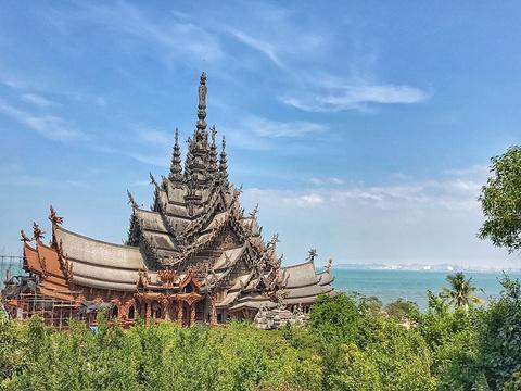 真理寺旅游景点图片