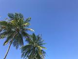 中央格兰德岛旅游景点攻略图片