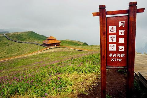 韭菜坪旅游景点攻略图