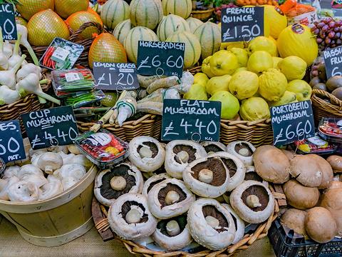 博罗市场旅游景点图片