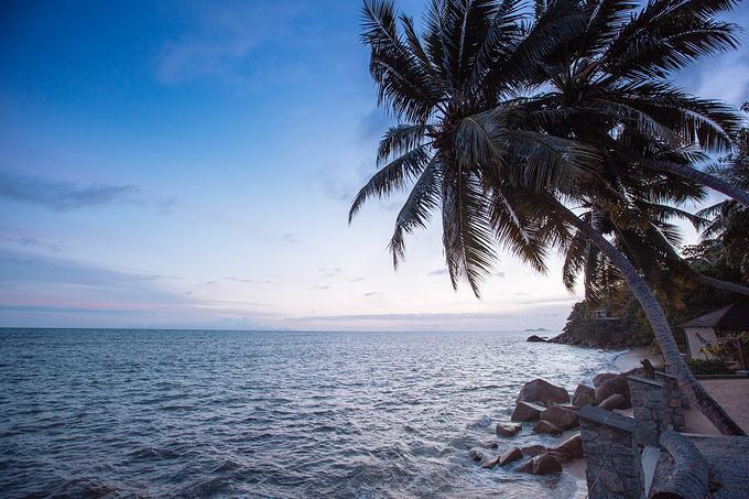 圣皮埃尔岛图片