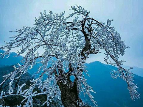 大熊山国家森林公园旅游景点图片