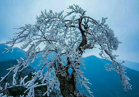 大熊山国家森林公园旅游景点攻略图