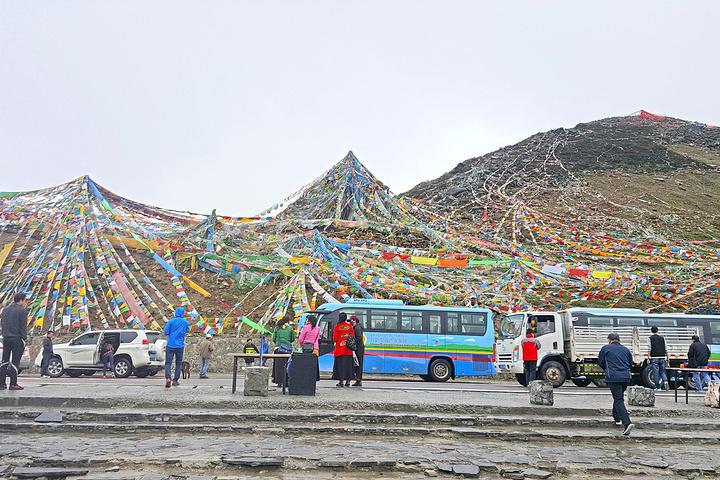 """""""色季拉山的杜鹃花面积大,品种多,盛开期间气势浩大,景色极为壮观。色季拉山口,海拔高度4720米_色季拉山""""的评论图片"""