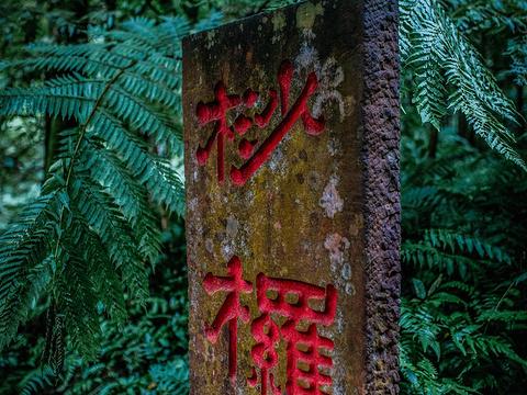 中国侏罗纪公园旅游景点图片