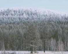 浴雪阿尔山,不顾山高与路远