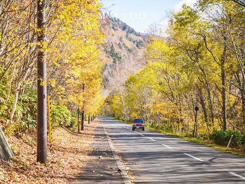 定山溪温泉旅游景点图片