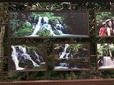 澄迈旅游景点攻略图片