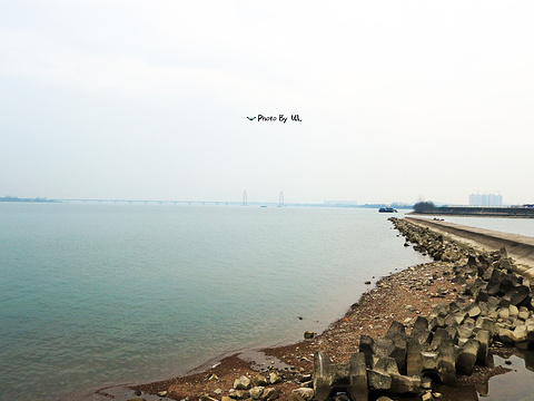 钱塘江大桥旅游景点图片