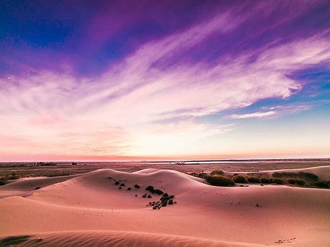 库布齐沙漠旅游景点图片