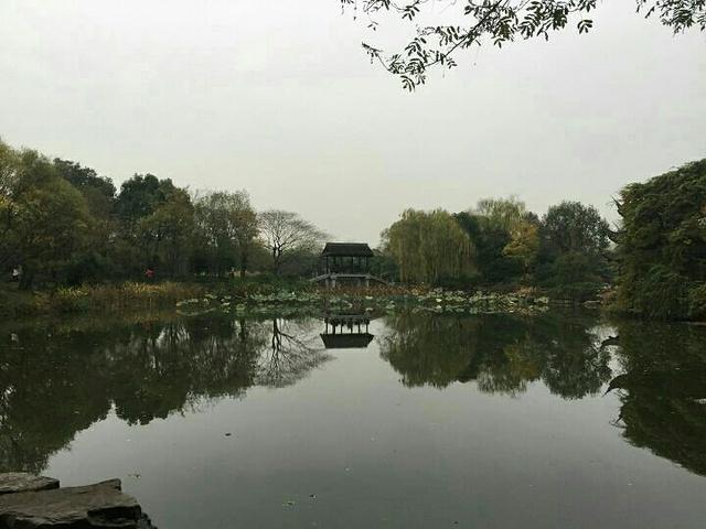 """""""三堤十景便概括了湿地的主要特色,十景之一的秋芦飞雪这个景点是唯一需要乘船才能观赏到的,很幸运在..._西溪国家湿地公园""""的评论图片"""
