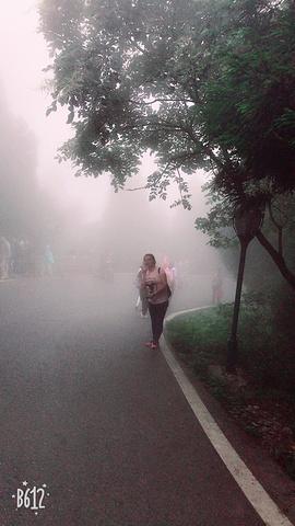 """""""沿途的风景很美,可以走走拍拍。下山的雾很大,我给我朋友拍了一张,我说不定就是传说中的损友,哈哈哈_上封寺""""的评论图片"""