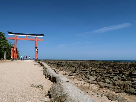 青岛神社旅游景点攻略图