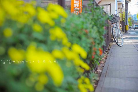 日田市旅游景点图片