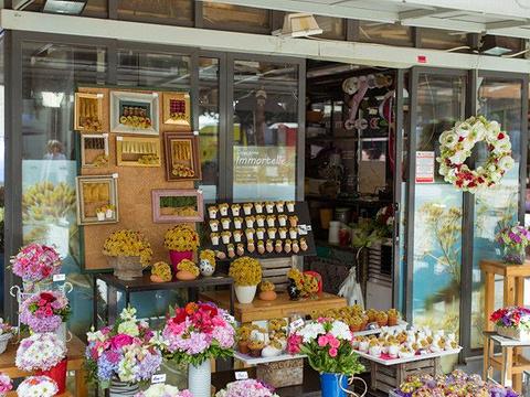 耶拉西奇广场旅游景点图片