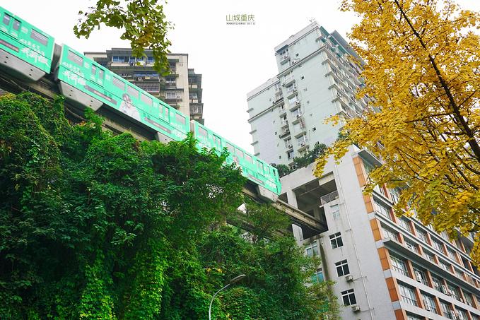 李子坝地铁站图片