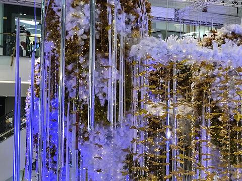 Emporium Shopping Centre购物中心旅游景点图片