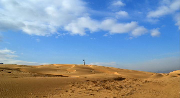 """和沙漠的一百天图片_2019天漠的自然优势,成为影视剧和广告选取""""西部风光""""的最佳 ..."""