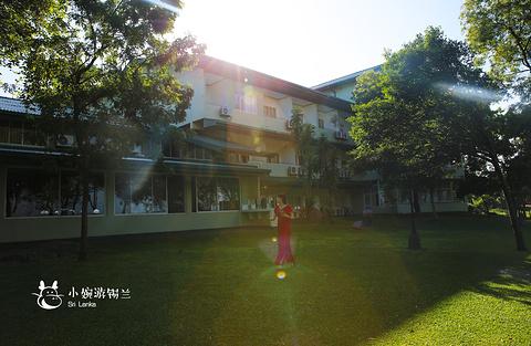 苏度阿拉利亚酒店(Hotel Sudu Araliya)旅游景点攻略图
