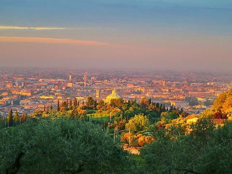 维罗纳旅游景点图片