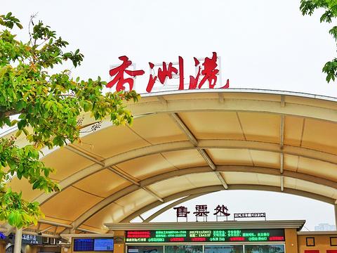 香洲社区公园旅游景点图片