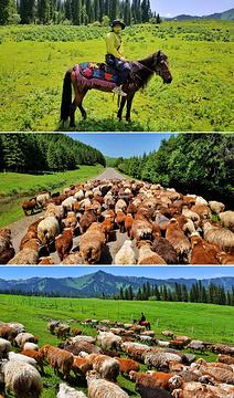那拉提旅游风景区旅游景点攻略图