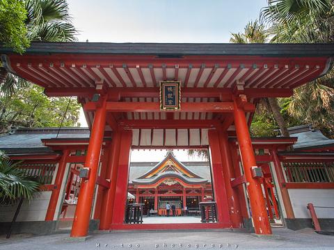 青岛神社旅游景点图片
