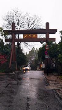 龙井村旅游景点攻略图