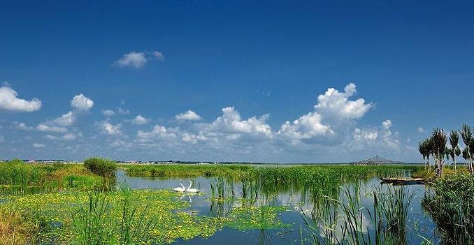 哈尔滨呼兰河口:梦里水乡图片