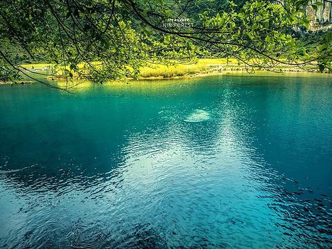 钟山公园旅游景点图片