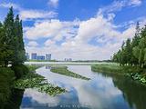 张家港旅游景点攻略图片