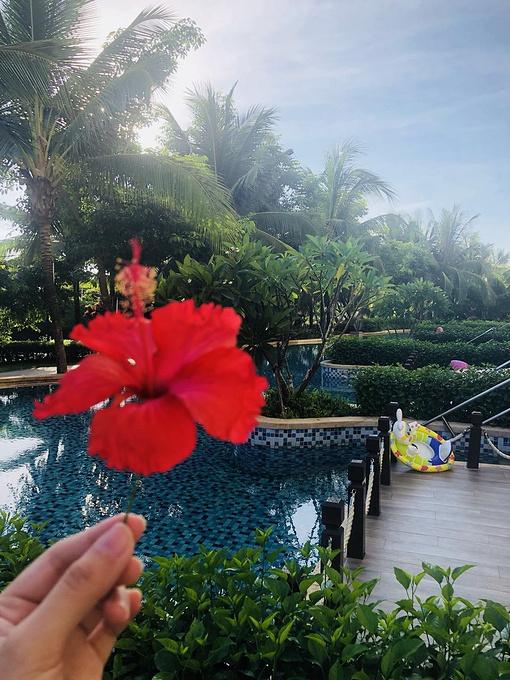 三亚海棠湾喜来登度假酒店图片
