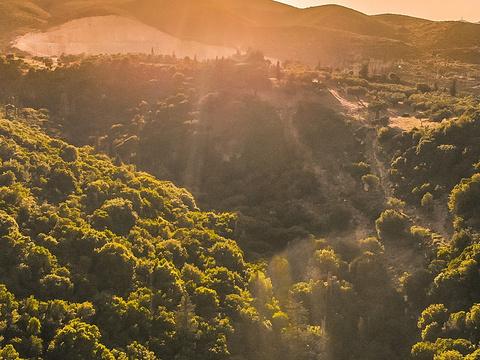 Cave Damianos Taverna旅游景点图片