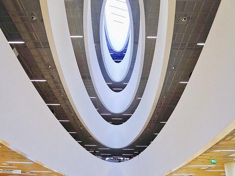 University of Helsinki旅游景点图片