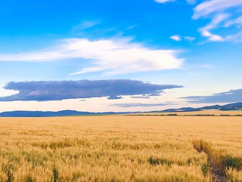额尔古纳旅游景点图片