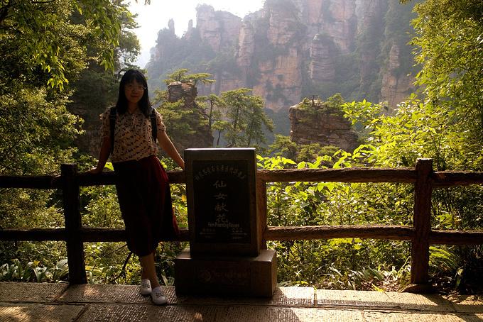 黄石寨景区(4小时)图片