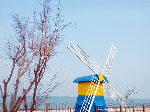 巨鹏飞梦幻海岸旅游景点图片