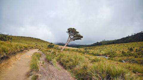 霍顿平原国家公园旅游景点攻略图