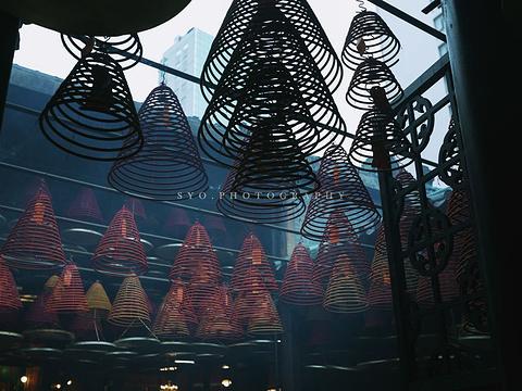 庙街夜市旅游景点图片
