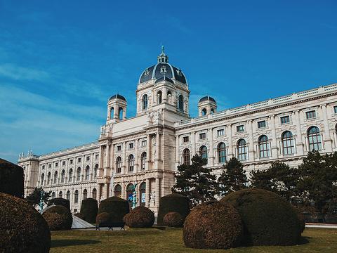 维也纳艺术史博物馆旅游景点图片