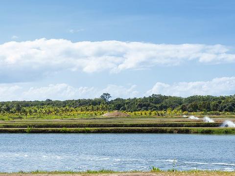 道格拉斯港旅游景点图片