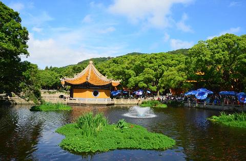 普济禅寺的图片