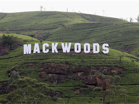 Mackwoods茶厂旅游景点图片