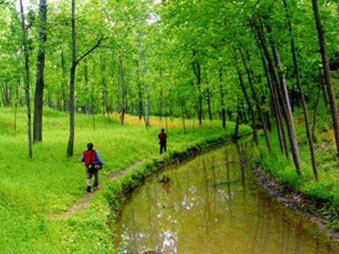 禹山游览区旅游景点图片