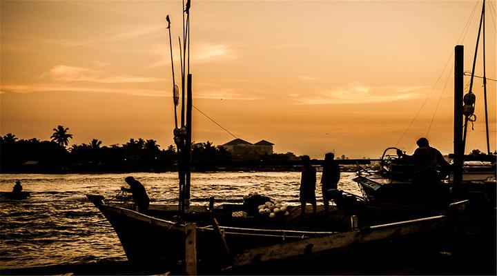 尼甘布鱼市旅游图片