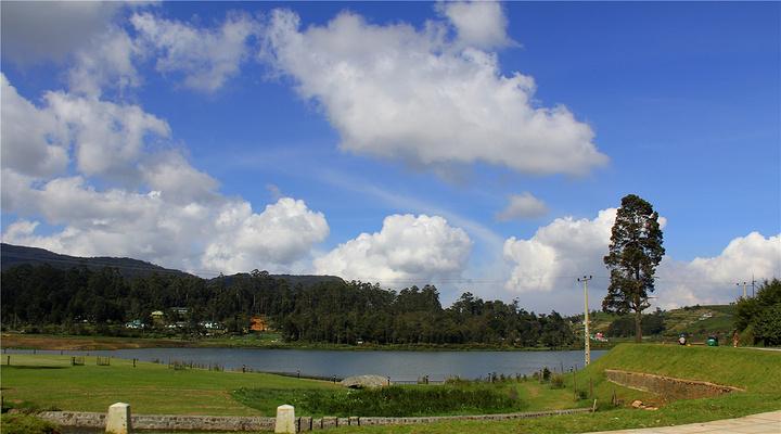 格雷戈里湖旅游图片
