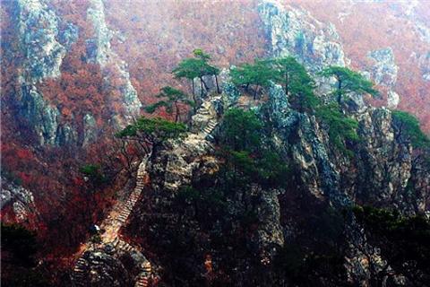 大连天门山国家森林公园的图片