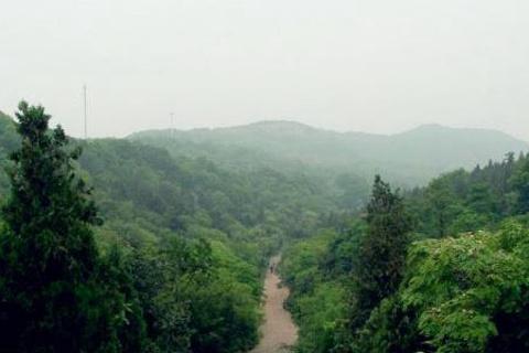 八公山国家森林公园